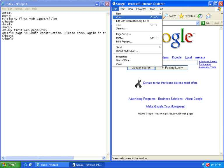 Open index htm in browser